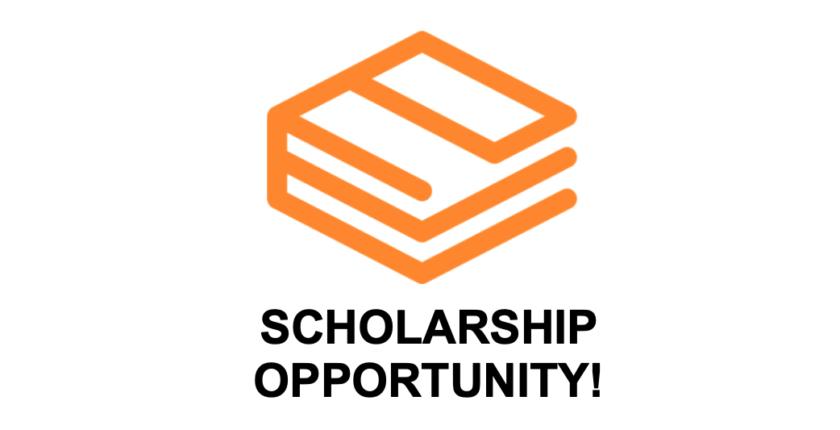 scholarship elektev